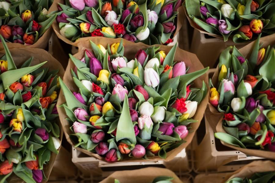 Hochzeitsblumen-Service auf der Insel Rügen – Blumen für die Heirat kaufen