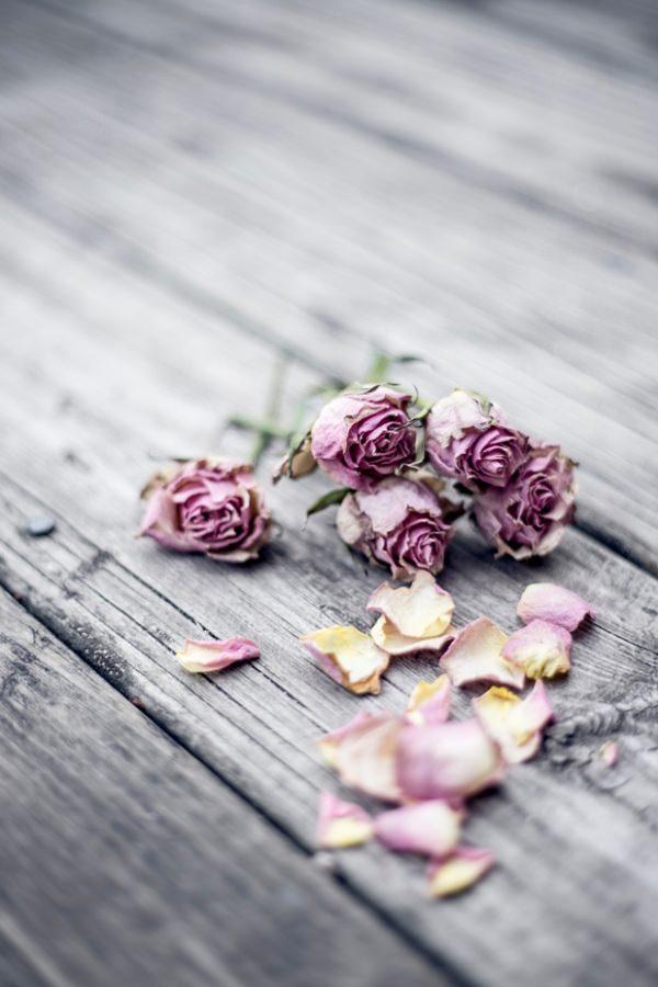 Heirat auf Rügen – Hochzeitsblumen für die Heirat an der Ostsee kaufen