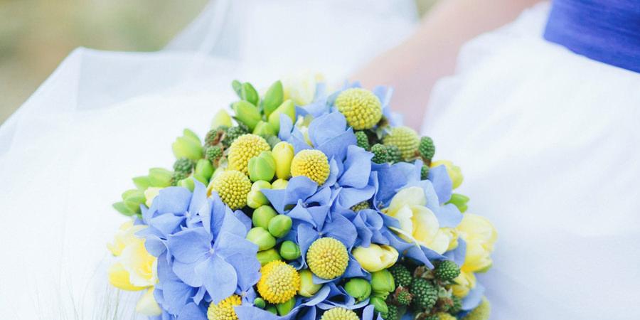 heiratenl hochzeitsportal insel ruegen   Hochzeitsportal Rügen