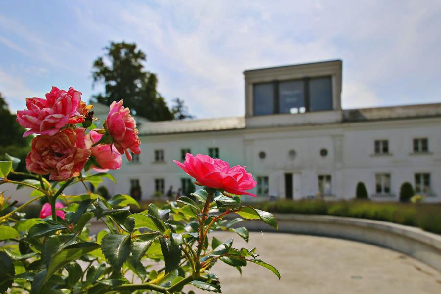 rosenstadt putbus orangerie hochzeitsportal insel ruegen   Hochzeitsportal Rügen