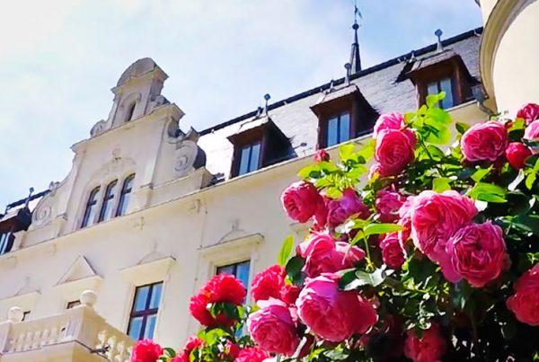 heiraten im schloss hotel ralswiek hochzeitsportal insel ruegen   Hochzeitsportal Rügen