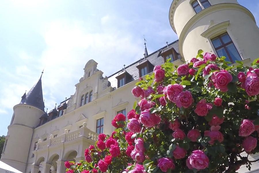 insel ruegen heiraten hochzeitsportal schloss | Hochzeitsportal Rügen